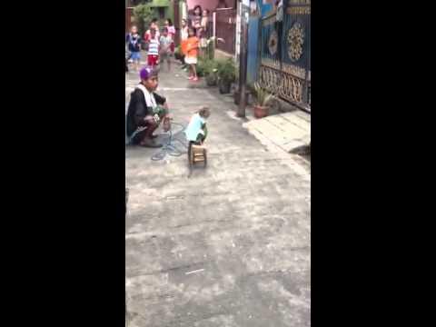 Topeng monyet (monkey show)