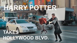 Harry Potter Takes Hollywood Blvd.