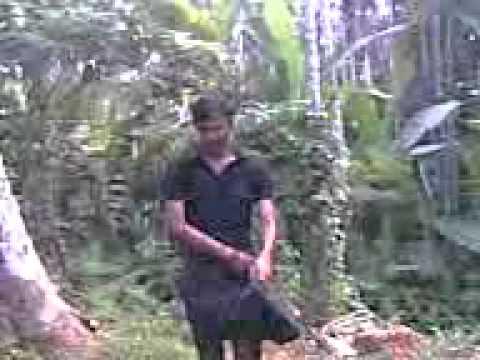 Thengapari video