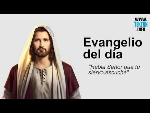 Evangelio Del Dia 9 De Julio De 2017 (Domingo 14º Tiempo Ordinario) Y Reflexión Papa Francisco
