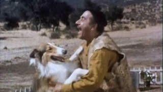 """Lassie - Episode #400  - """"Temper the Wind""""-  Season 12, Ep. 15 - 12/19/1965"""
