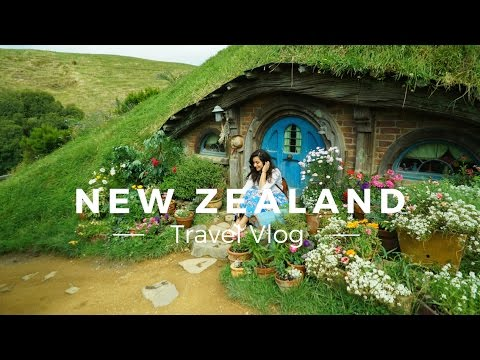 Beautiful New Zealand Road Trip!