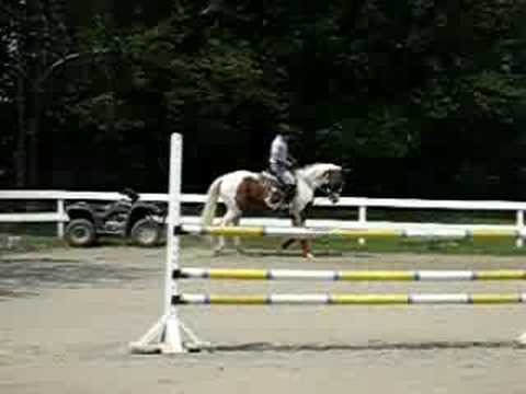 My new horse Roxy Video