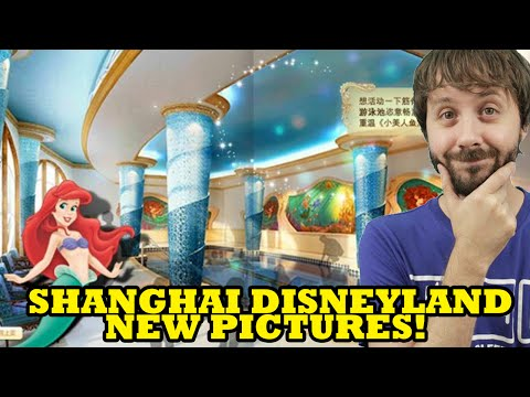 SHANGHAI DISNEYLAND NEW PHOTOS & UPDATES - This Week In Disney # 20