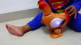 AYAM BERTELOR - MAINAN  Anak | Hen toys Keep laying eggs while walking | animals toys for kids