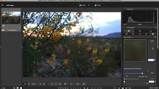Canon Digital Photo Professional 4 - Free Photo Editing Software