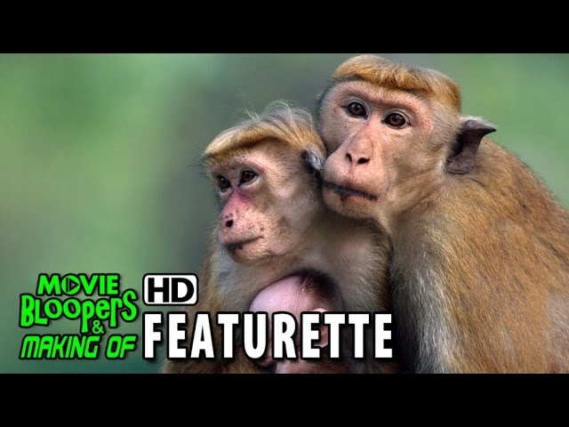 Monkey Kingdom (2015) Featurette - Inside Disneynature's program with Conservation International
