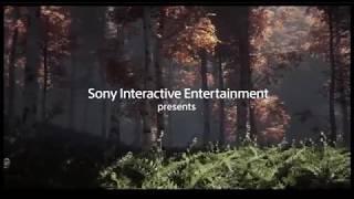 Sony Interactive Entertainment/Naughty Dog (2017)