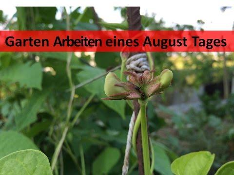 Garten Arbeiten Eines August Tages | U.a. Hochbeet Aufstellen
