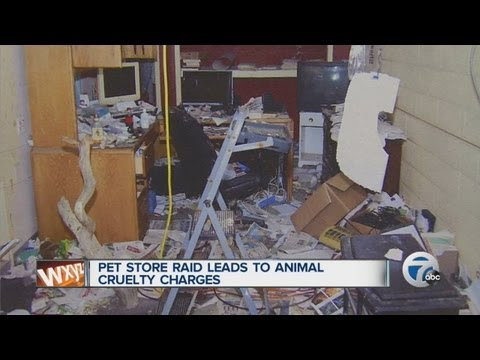 Pet store raid leads to animal cruelty charges