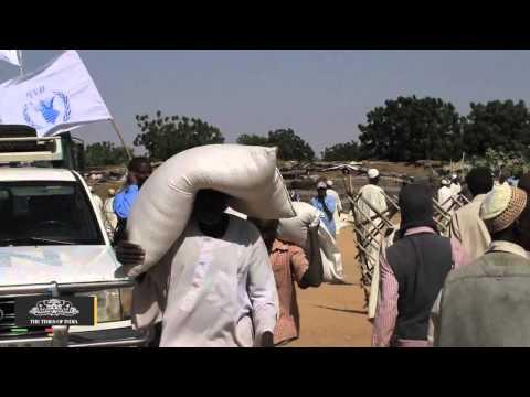 Darfur Offers Islamists 'fertile Ground' as Violence Persists: U.N. - TOI