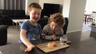Science Experiment - Egg in vinegar