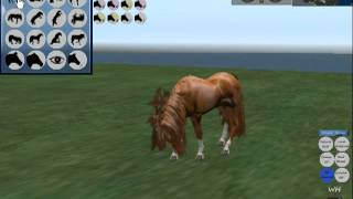 Water horse *HUD