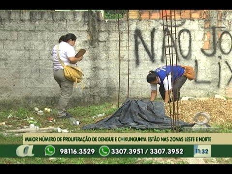 Proliferação de dengue e chikungunya estão nas zonas leste e norte de Manaus