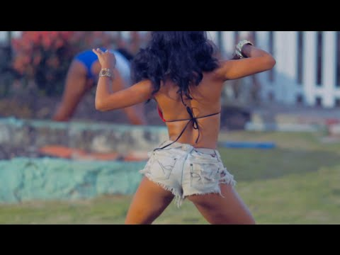 2015 Dancehall + EDM + Moombahton - Andre Airplane's Moomraker (Official Video)