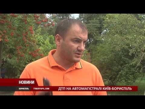 На трасі Київ-Бориспіль нетверезий водій скоїв ДТП. Дії винуватця збурили громаду міста