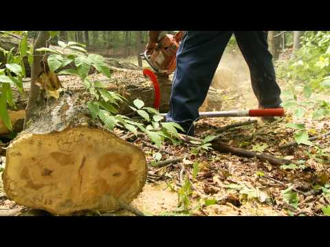 Woodchuck Timber Jack Tool Review