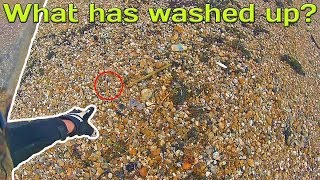 What has washed up on the beach?