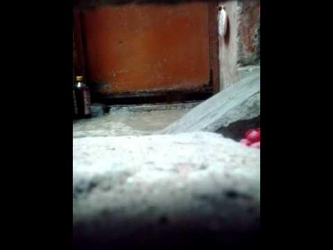 Bangala Aunty Hot Bath MMS