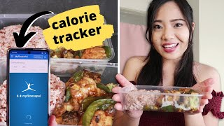 MEAL PREP (Healthy Recipes for Weight Loss/Gain) ♥ MY FITNESS PAL - Paano Gamitin?