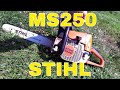 BEST INDEPTH Stihl MS250 Chainsaw Review - Great homestead chainsaw for firewood mp3 indir