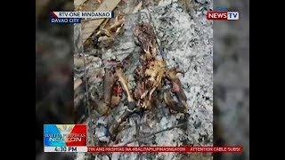 BP: Video ng pagkatay at pagluto sa isang aso, viral