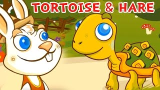 Cute tortoise and hare