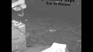 Mutant Ape - Live in Glasgow