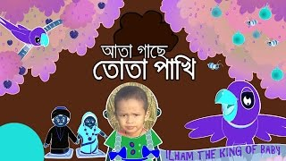Ata Gachey Tota Pakhi By ILham || ILham The King of Baby