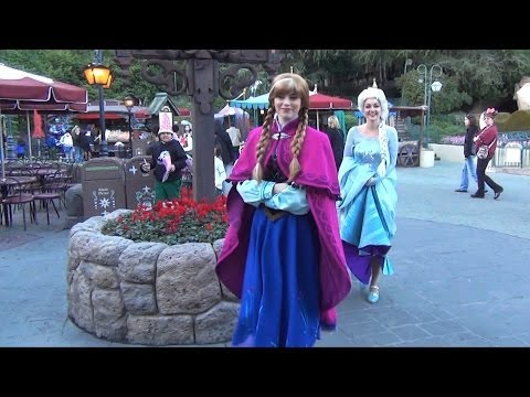 Characters at Disneyland w/ Jack & Sally, Anna & Elsa, Tweedles, Prince John, Friar Tuck, Mater