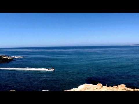 [Shark Sighting La Jolla Cove, CA 8/29/15 Beach Evacuated !] Video