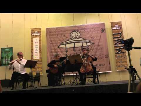 LIS de Marco Pereira - para flauta, violoncelo e violão