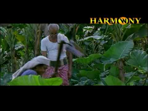 Manasinakkare - 6 Jayaram, Nayanthara Satyan Anthikkadu Malayalam Movie (2003) video