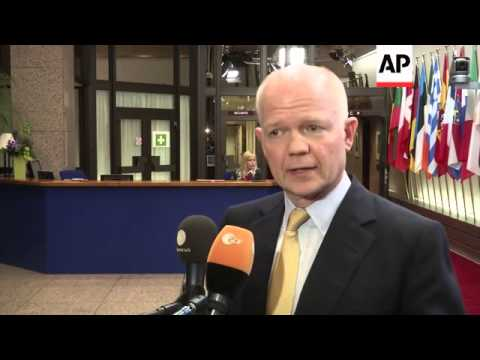 British FM Hague, Irish FM Gilmore confirm Ukraine sanctions