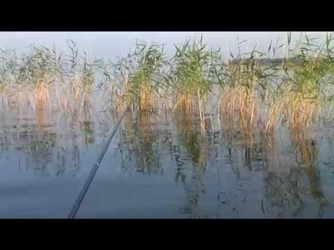 озеро сало рыбалка