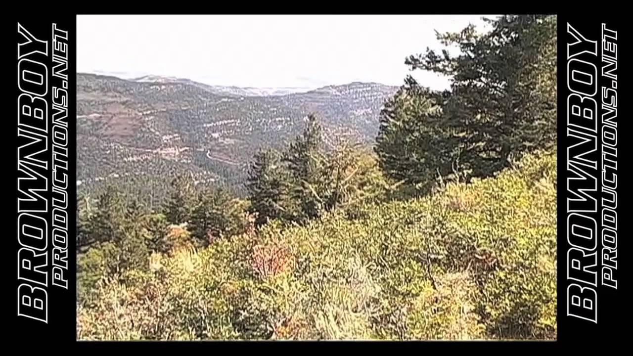 Book Cliffs Elk Book Cliffs Elk Callin