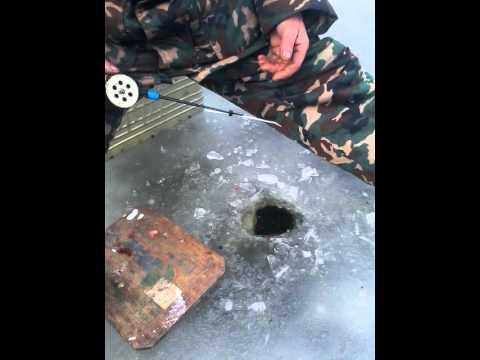 рыбалка в тамбове 68 rus