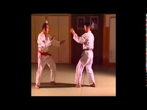 Before Brazilian Jujutsu? - Fusen Ryu