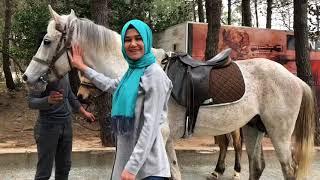 Shile İnjekum Parki: Şile İncekum Macerapark