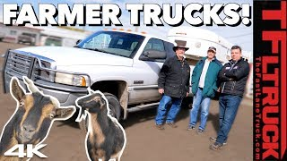 What Trucks Do Real Farmers Drive? Haulin' & Selling Mr. Truck's Goats