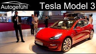 Thomas checks out the Tesla Model 3 Exterior Interior REVIEW - Autogefühl