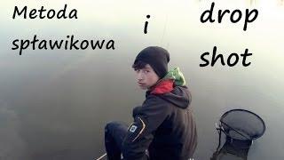 Wędkarstwo spławikowe i drop shot na starorzeczu Odry
