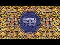 Leo Megma & Harry Solomon - Feeling The Groove (Untouchable Mix)