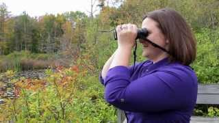 How to get crystal clear focus with your binoculars