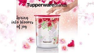 Tupperware Brands Jubilee 2018 Highlights