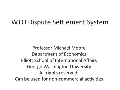 WTO Dispute Settlement System