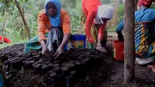 Friends of Usambara Society Documentary