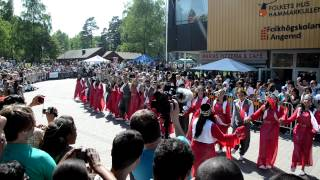 Carnival of Hammarkullen, Gothenburg, Sweden. Kurdish Dance group. May 2012