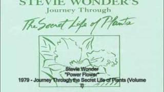 Watch Stevie Wonder Power Flower video