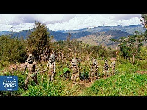 Full Documentary | Ambassadors of the jungle - Planet Doc Full Documentaries thumbnail